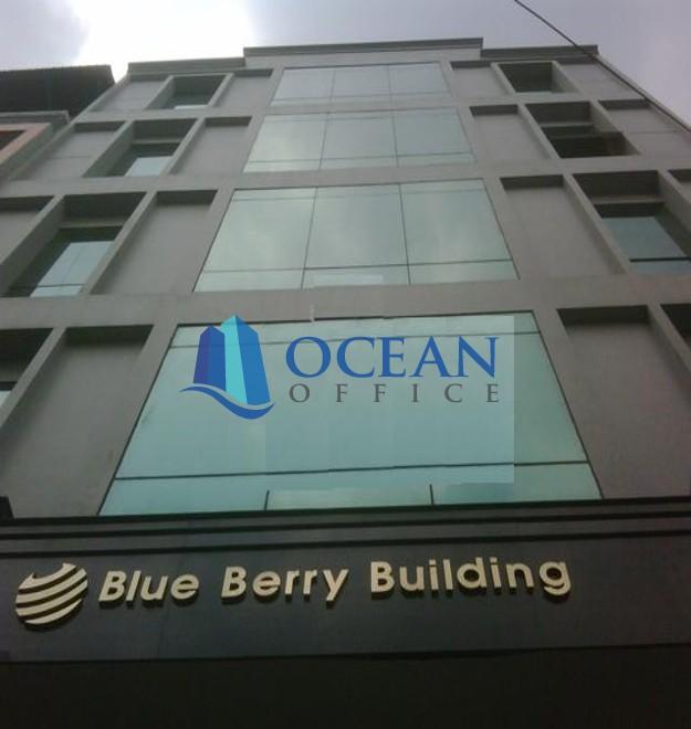Blue Berry Building